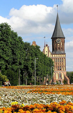 Summer in Kaliningrad